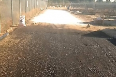 Laying-of-surface-lime-for-WBM-internal-road
