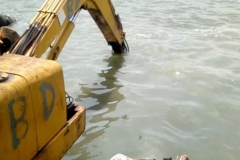 Special Swamp Boogie Clearing Water Way for Dredging Activities2