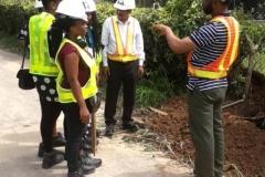Training on street light installations(2)
